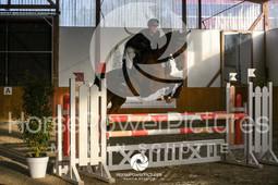 RFV Avenwedde - Prüfung 12-4108